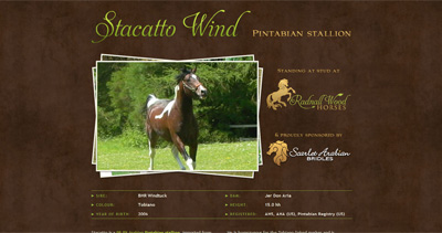 Stacatto Wind