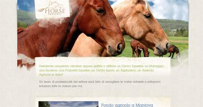 Horse Property