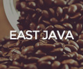 East Java WordPress Theme