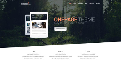 Sherwood One Page WordPress Theme