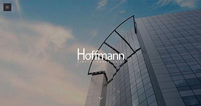 Hoffmann — Direito Empresarial