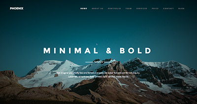 Phoenix Minimal Wordpress Theme