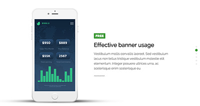 Minimalistic Mobile Application Promo Landing Page