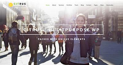 Citrus Creative One Page Multi-Purpose Theme