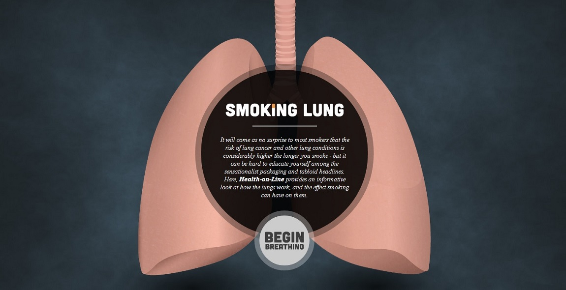 Smoking Lung  Most Loved Website